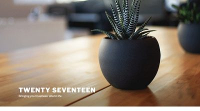 Twenty Seventeen Theme review