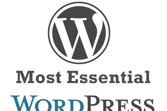 Popular and Essential WordPress plugins List