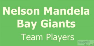 Nelson Mandela Bay Giants team players