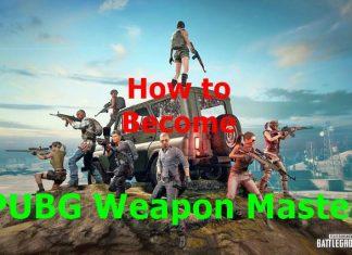 PUBG Weapon master